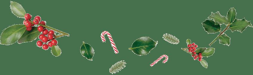 AX The Saint John - Christmas/New Years Events